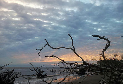Big Talbot Island - North Florida Land Trust