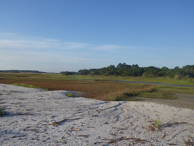 A view of the salt marsh on Sawpit Island.